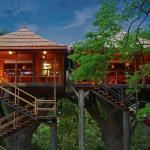 Rangerwood Machan Jungle Tree House, Thekkady