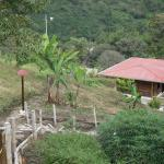 Finca Ecoturistica La Fania,  Ibagué