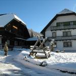 Hotellbilder: Ferienwohnungen Bacherhof, Sankt Michael im Lungau