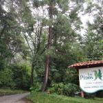 Los Pinos - Cabañas & Jardines, Monteverde