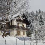 Fotografie hotelů: Ferienhaus Bella Vista, Presseggersee
