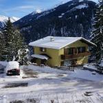 Hotel Pictures: Ferienhaus Nina, Finkenberg