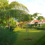 Malinamoc Paradise, Dili