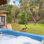 酒店图片: Yelverton Brook Eco Spa Retreat & Conservation Sanctuary, Metricup