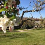 Les Jardins d'Anna - Chambres d'hôtes,  Tapon