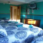 Hotel Pictures: Hostal Patagonico, Punta Arenas