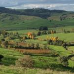 Hotelbilleder: Moorallie Cottage Farmstay, Adelong