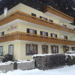Hotellbilder: Haus Kärnten, Döbriach