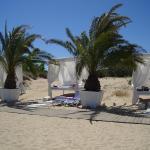 Palm Residence Deluxe Studios, Sunny Beach