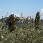 Podere Bellavista, San Gimignano