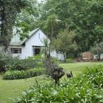 Drakensberg Bush Lodge,  Winterton