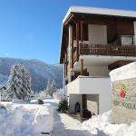 Hotel Pictures: Hotel Pazzola, Disentis