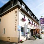 Hotel Pictures: Goldner Stern, Kestert