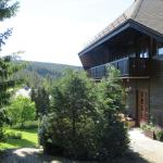 Hill Side Apartment,  Feldberg