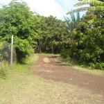 Tourvarua, Hanga Roa