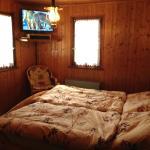 Hotel Pictures: Chalet La Bonne Planque, Salvan