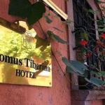 Hotel Domus Tiberina,  Rome