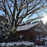 Fotos do Hotel: Römerhütte, Sankt Lorenzen am Wechsel