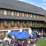 Hotel Pictures: Hotel Zum Löwen - Unteres Wirtshaus, Titisee-Neustadt