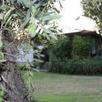Patroudis House, Skala Rachoniou