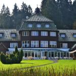 Hotel Pictures: Hotel Harzhaus, Benneckenstein