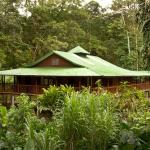 Hotel Pictures: Selva Verde Lodge, Sarapiquí