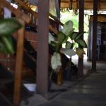 Sea Bird Beach Cafe & Cottages, Chopdem