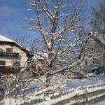Hotel Pictures: Naturpark Bauernhof Sperl, Mariahof