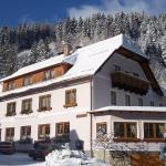 ホテル写真: Dretenpacherhof, Trattenbach