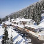 Hotel Pictures: Bio-Berghotel Ifenblick, Balderschwang