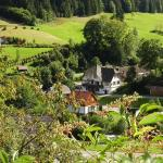 Hotel Pictures: Hostel Black Forest Holzwälder Höhe, Bad Rippoldsau-Schapbach