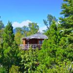 Tree Lodge Nidos de Pucon,  Pucón