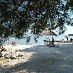 Apartments Tomic,  Trogir
