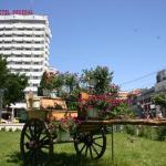 Hotel Decebal, Bacău