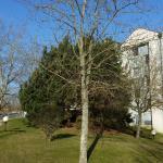 Hotel Pictures: Hotel Noctuel, Rambouillet