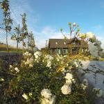 Świetnokrzyska Chata,  Bodzentyn