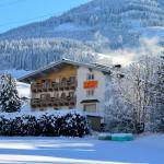 Hotel Pictures: Casa Montana, Niedernsill