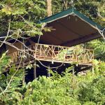 Hotel Pictures: Rafiki Safari Lodge, Savegre