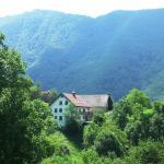 Hisa Brdo, Grahovo