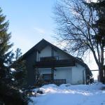 Hotel Pictures: Villa Rose, Altenau