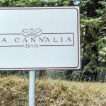 B&B La Cannalia,  Teana