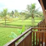 Anini Raka Resort & Spa,  Ubud