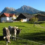Hotellikuvia: Bio-Urlaubshof Dansbach, Spital am Pyhrn