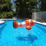 Hotellikuvia: Noosa Gardens Riverside Resort, Noosaville