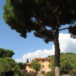Villa Boldrini b&b, Venturina Terme