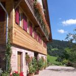 Hotel Pictures: Martinhansenhof, Oberwolfach