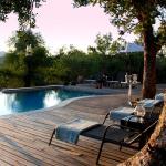 Mbizi Bush Lodge, Grietjie Game Reserve