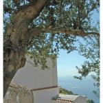 Al Poggio Antico,  Amalfi