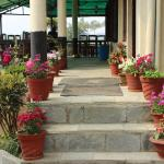 Hotel River Side, Sauraha