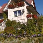 Dom Pod Różą, Leśna
